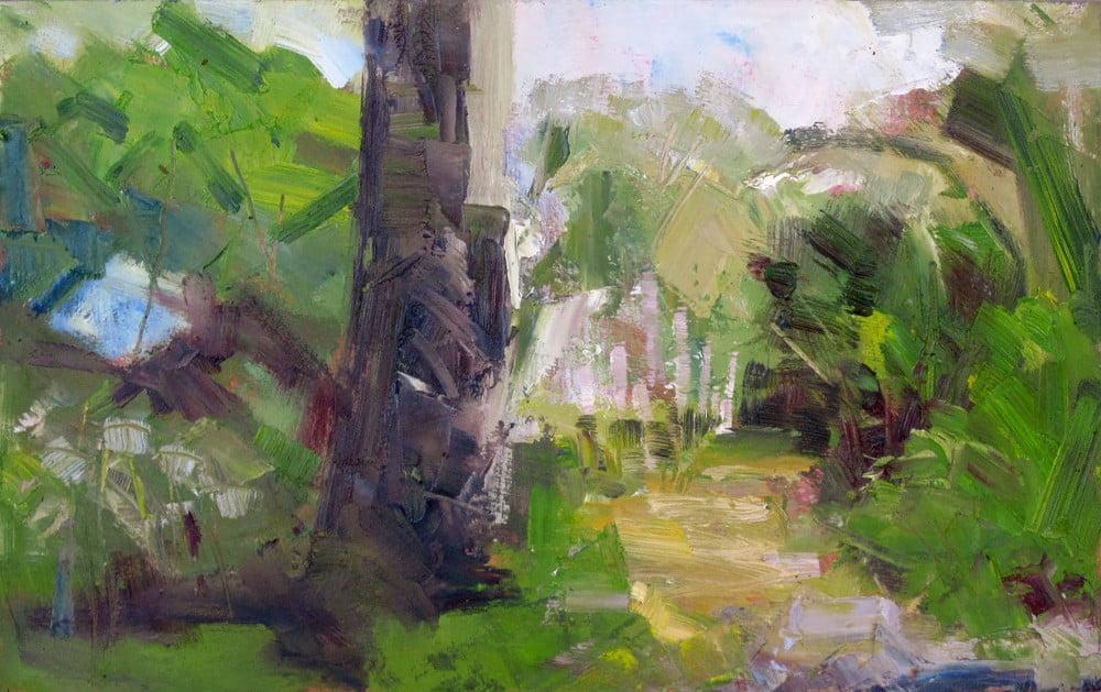Lush Garden at Trewidden