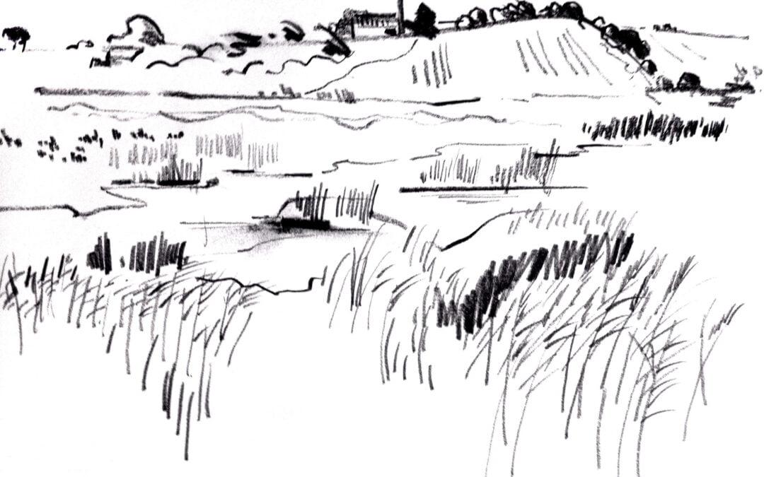 Marshland – Suffolk